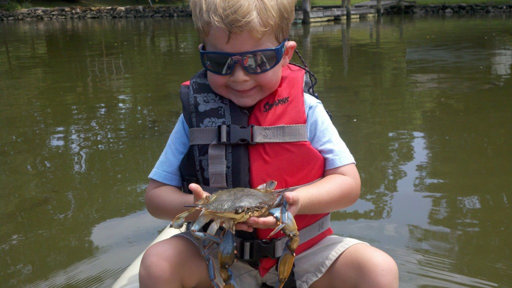 "Jack with a big soft crab (a ""whale"") on Hogpen Creek in Baltimore County."
